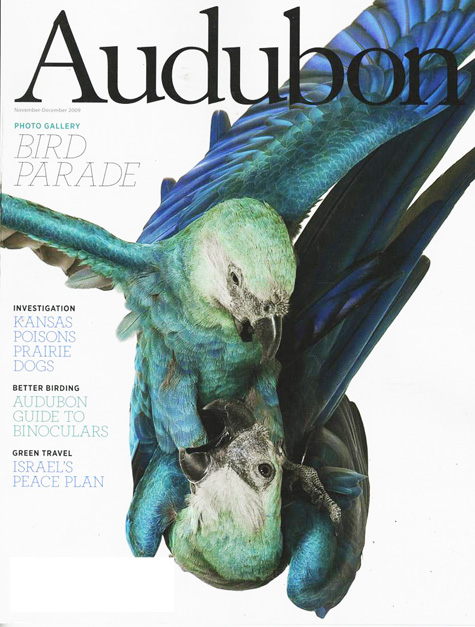 Audubon Bird Cover