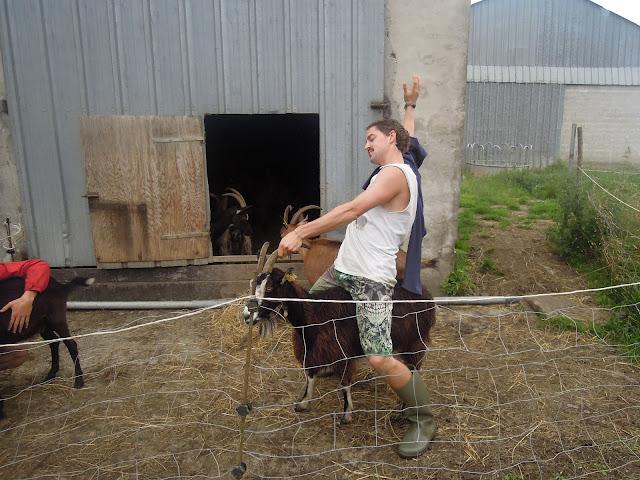 goat france