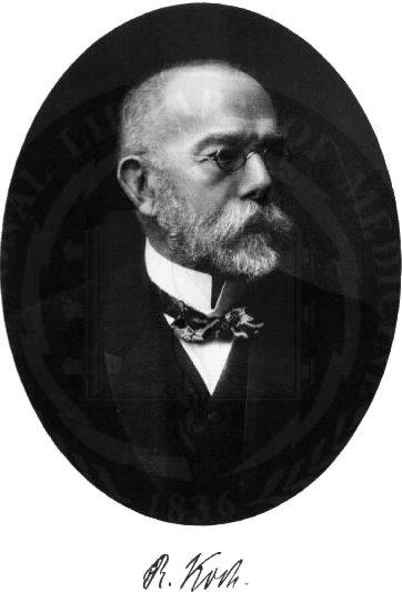 Patrick Von Stutenzee S History Blog Robert Koch With