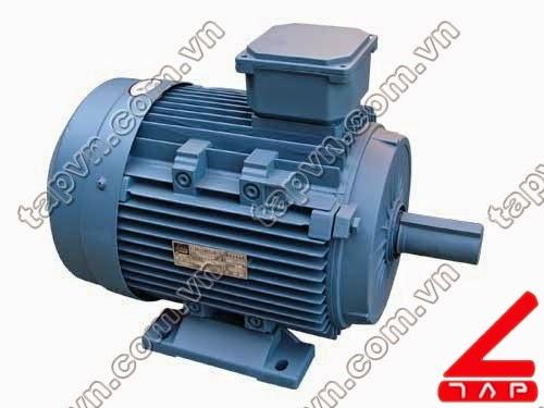 Động cơ điện 3 pha Y3 series