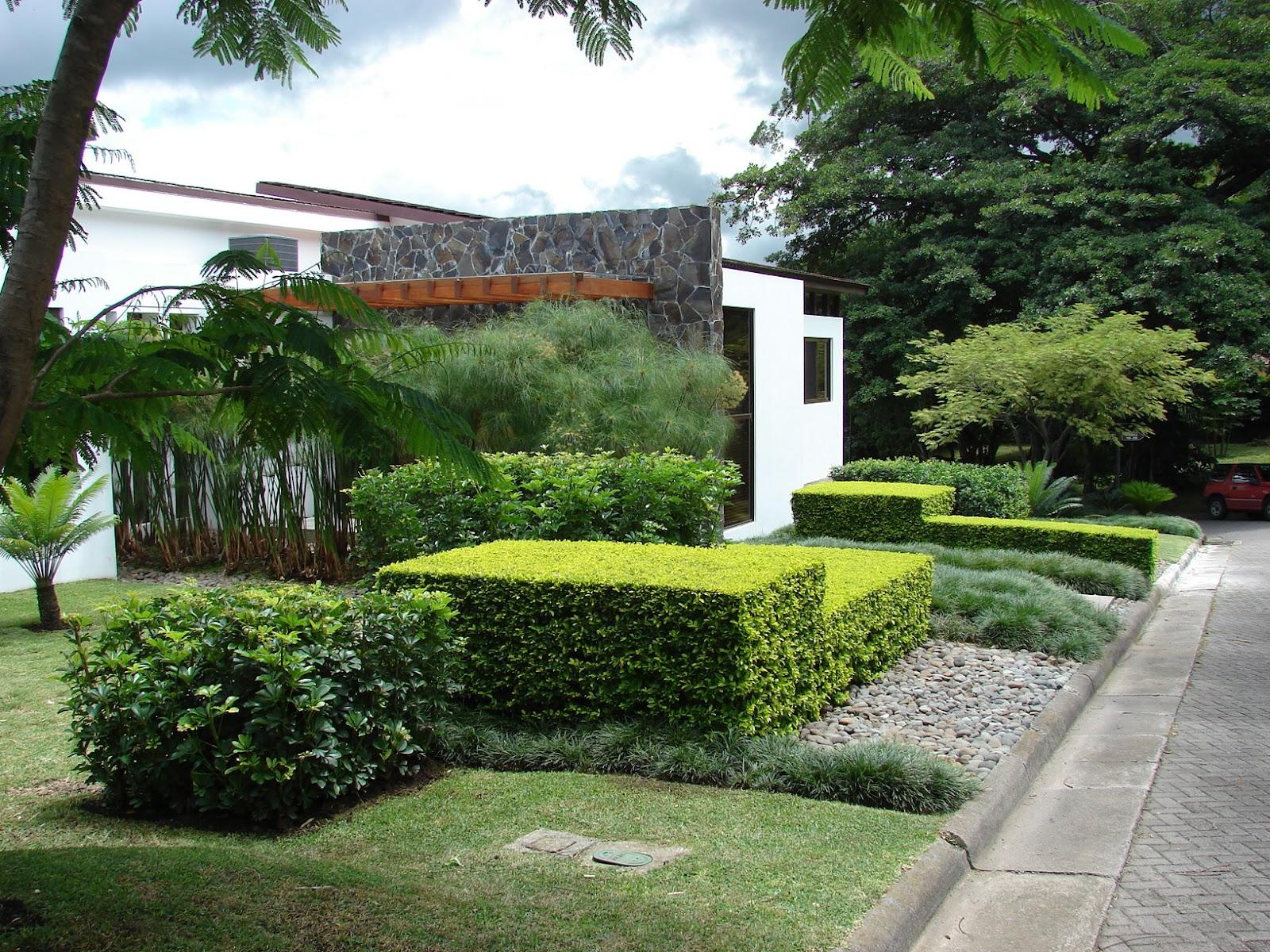 Paisajismo pueblos y jardines la paleta de colores del for Como podar un ciruelo de jardin