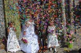 Ibu Sekarat, Tiga Bersaudara Menikah Bersama