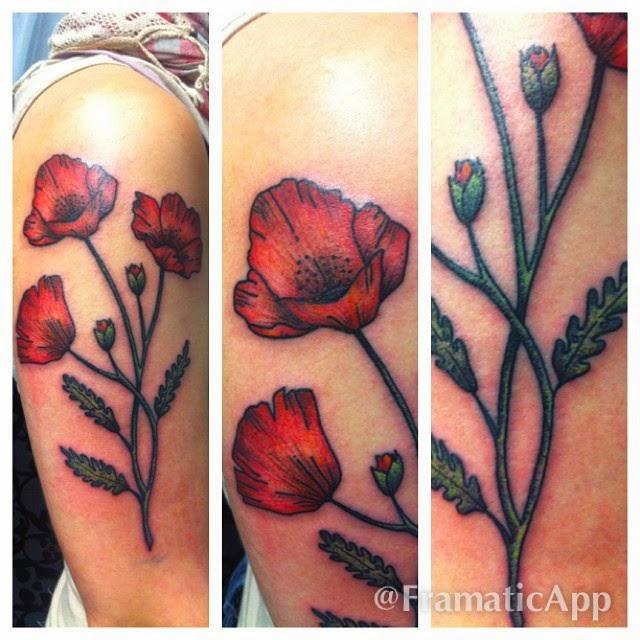 tatouage coquelicot