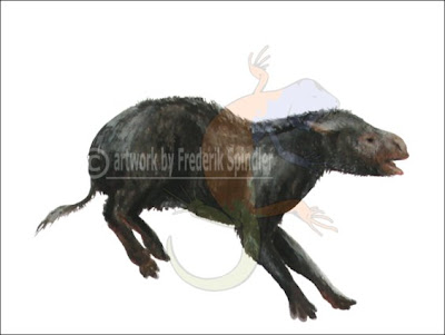 persidactilos fosiles Palaeosyops