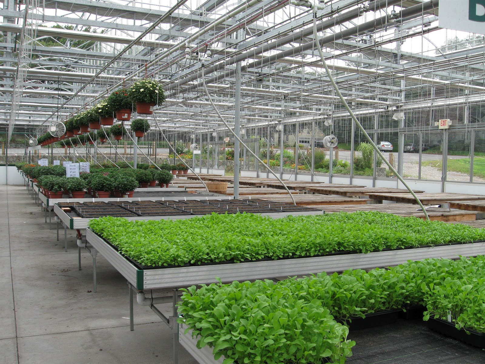vegetable production 3 north carolina organic vegetable production cost study producers, lending institutions, agricultural advisors, and industry analysts need timely economic information in order to evaluate business opportunities and make well.