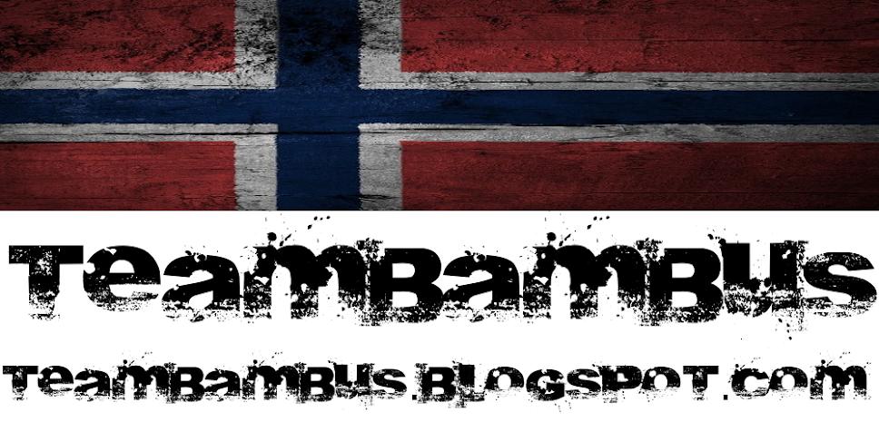 TeamBambus