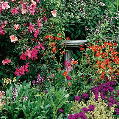Site Blogspot  Tips  Gardening on Dr  Dan S Garden Tips  April 2012
