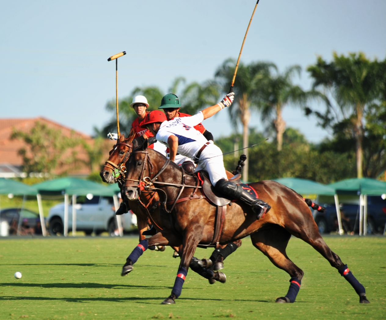 palm beach home and garden palm beach polo america s equestrian just a few miles west of palm beach lies one of the equestrian capitals of the world wellington home of the palm beach polo scene
