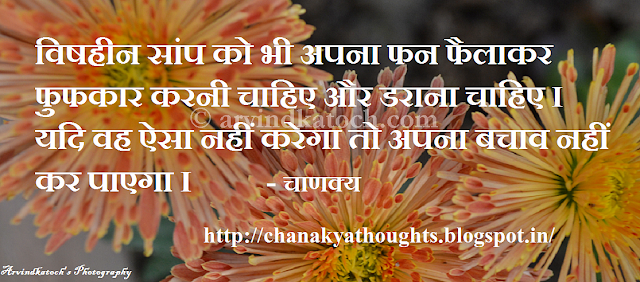 chanakya, thought, Hindi, Snake, poison