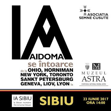 Expoziție de Ii - IA AIDOMA, 23 iunie - iulie 2017