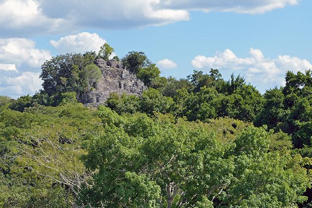 Vue sur la canopée à Cobá