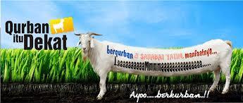 Hewan Qurban 2012