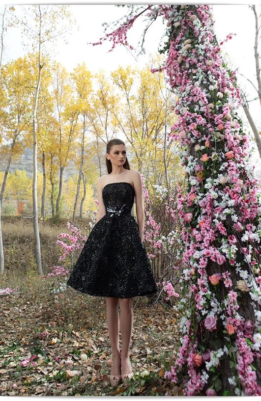 2015 Abendkleider und Brautkleider von Firas Abou Hamdan