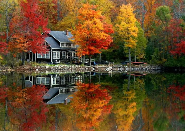 Awesome Reflection Pictures