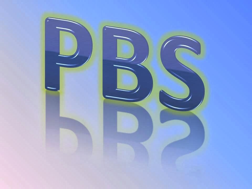 Sistem PBS
