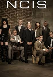 Assistir NCIS 13x09 - Day In Court Online