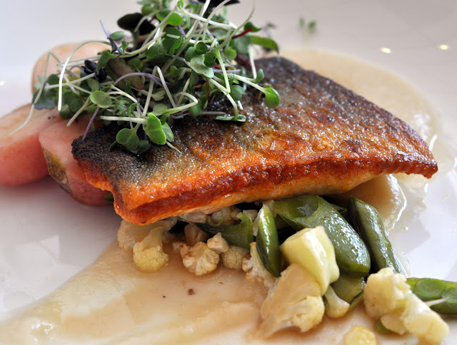 Pan-Roasted Arctic Char at Tarla Mediterranean Grill - Napa, CA | Taste As You Go