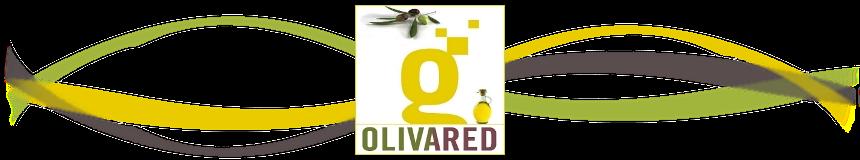 Olivared Guadalinfo