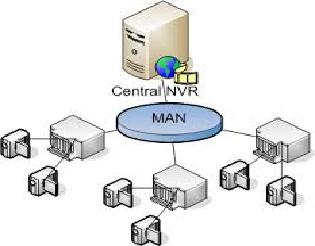 model jaringan MAN