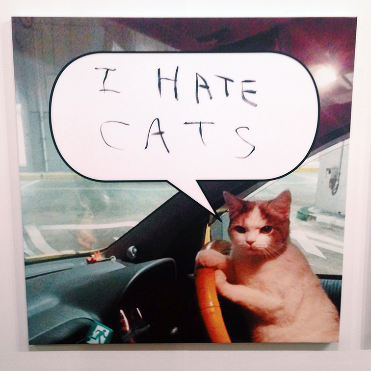 Miami Art Basel 2014, Hateful Cat by Mark Flood