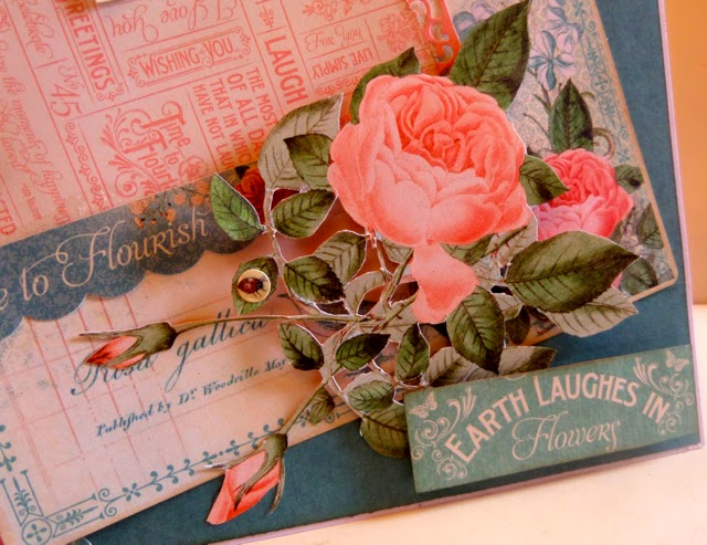 Time to Flourish Card by Clare Charvill Graphic 45