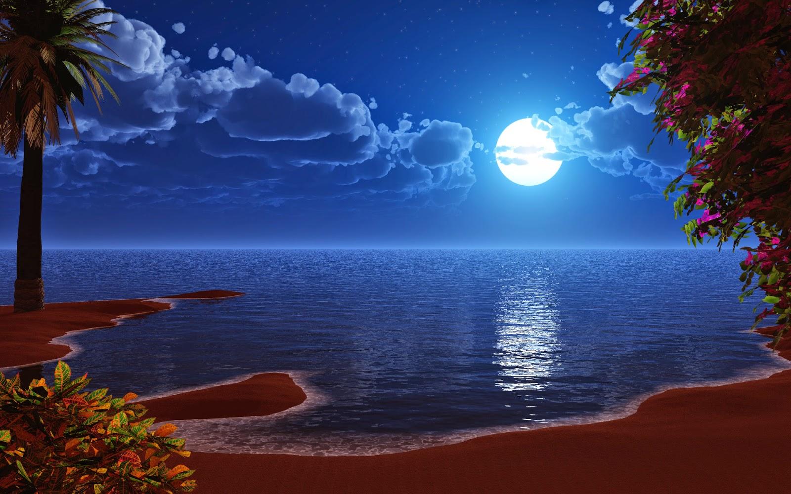 beauty-of-nature-at-night-in-full-moonlight.jpg
