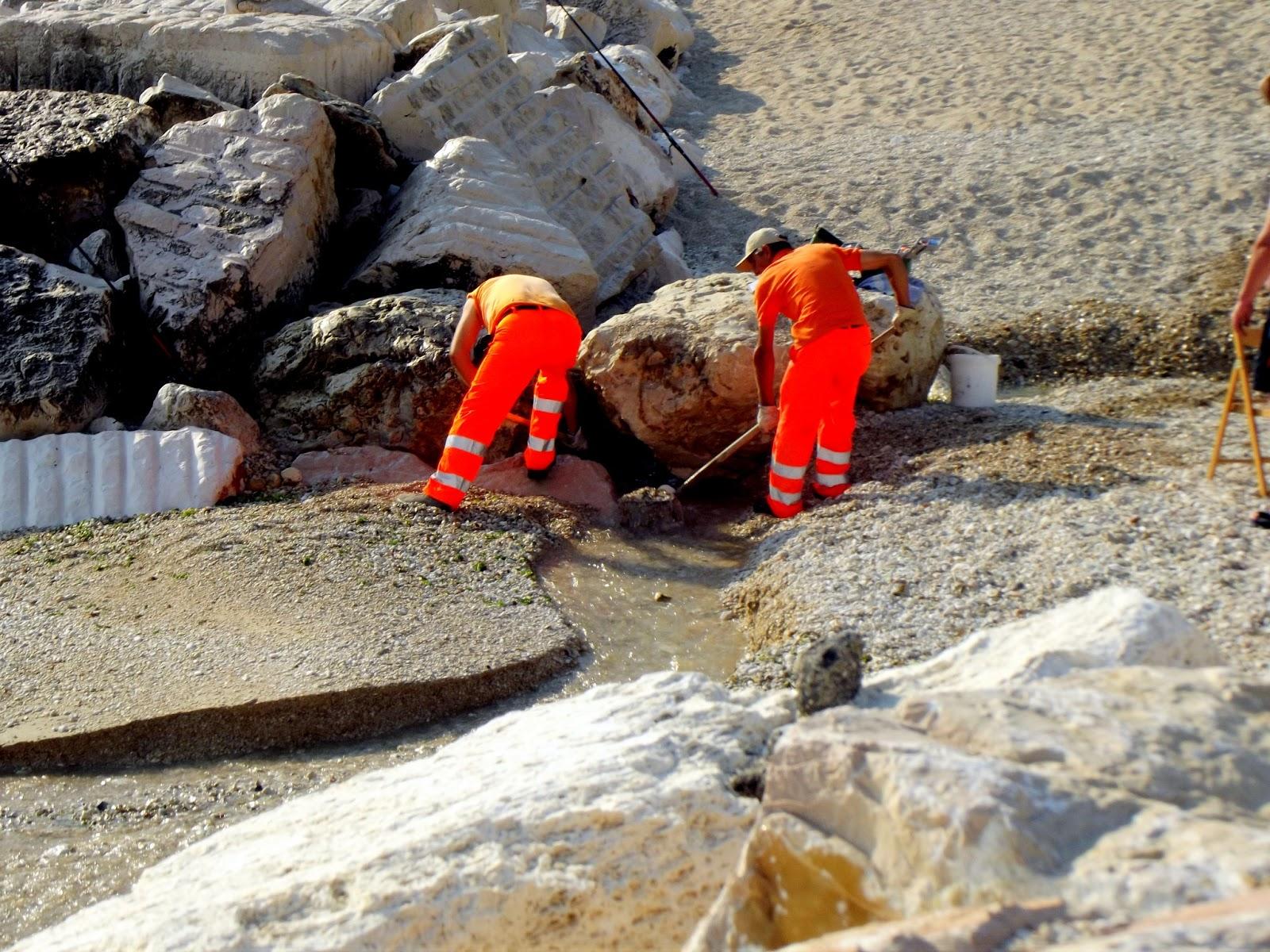 Addetti alla pulizia della spiaggia l 39 ignurant8 de casa - Alla colorazione della spiaggia ...