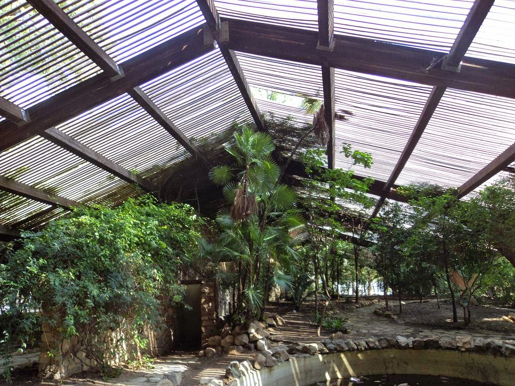 Cultura de sevilla el jard n americano sigue for Jardin americano sevilla