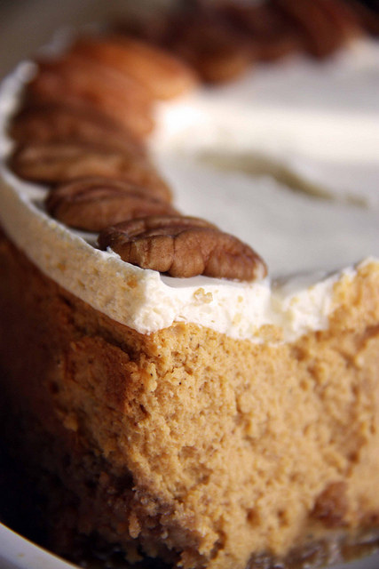 Twirl and Taste: Sweet Lucy Pumpkin Cheesecake with Caramel Sauce puts ...
