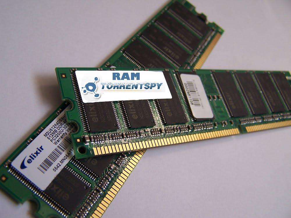Dynamic Ram  More Info