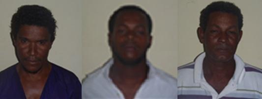 Marino Mota Lantigua (alias socio), Gabriel Antonio Segundo Cortorreal (Alias Gari) y David Segundo (Alias Dabo)