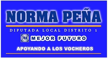 NORMA PEÑA DIPUTADA DISTRITO 1