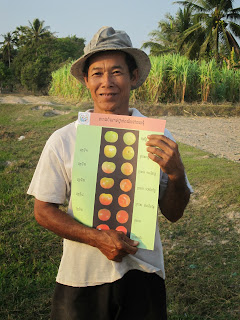 man holding chart showing different tomato colours