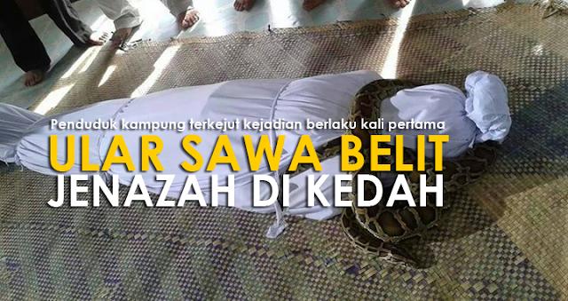 Gempar Ular Sawa Belit Jenazah Di Kedah 3 Gambar