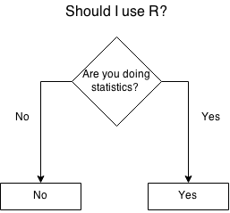 Adopting R for experienced developers