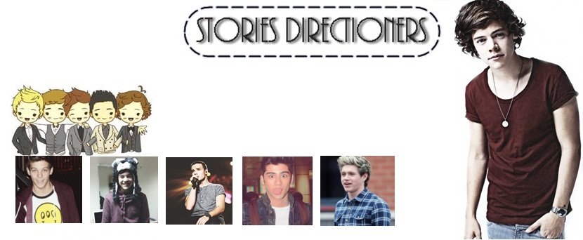 Stories Directioners