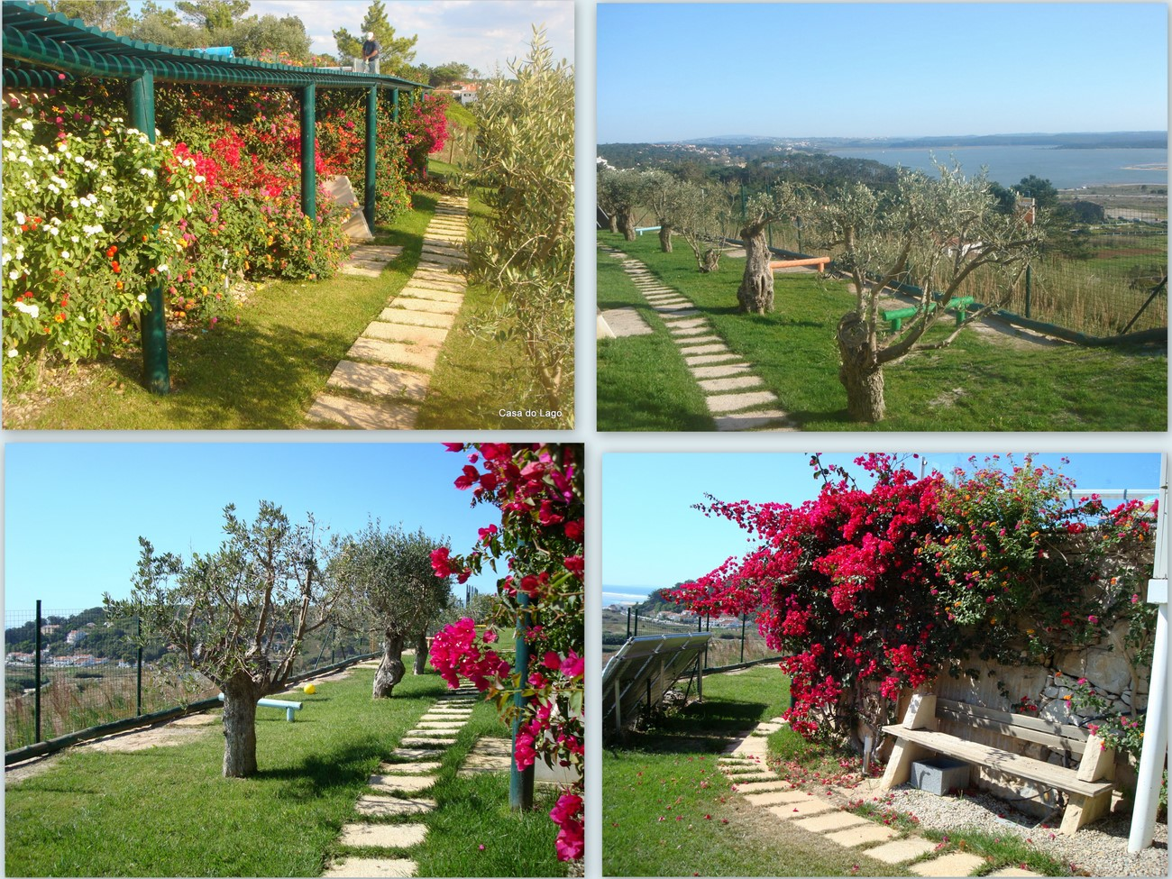 beautiful garden, located at the properties&#39; lower level