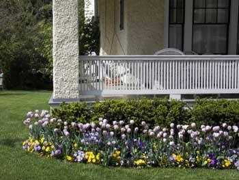 Woodland shade gardens for kaye blomeke deck garden beds for Front porch landscaping plants