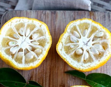 jeruk yuzu