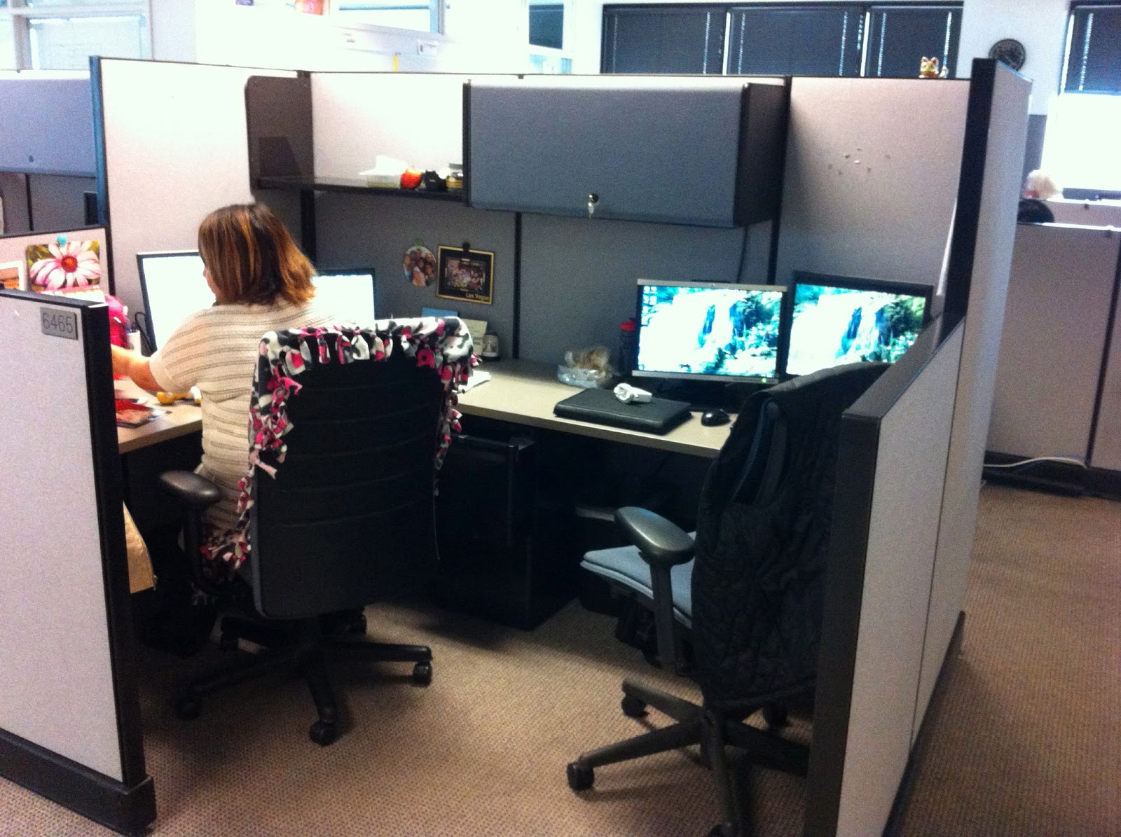 Image Gallery Shared Cubicle