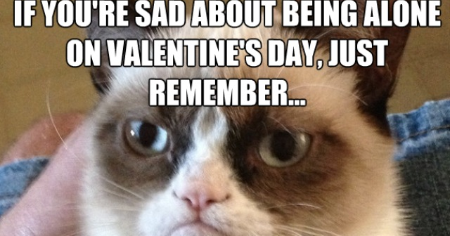 Grumpy Cat On Being Alone On Valentine S Day Dr Heckle