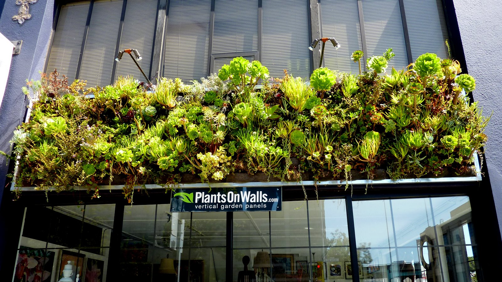 Plants On Walls vertical garden systems September 2011