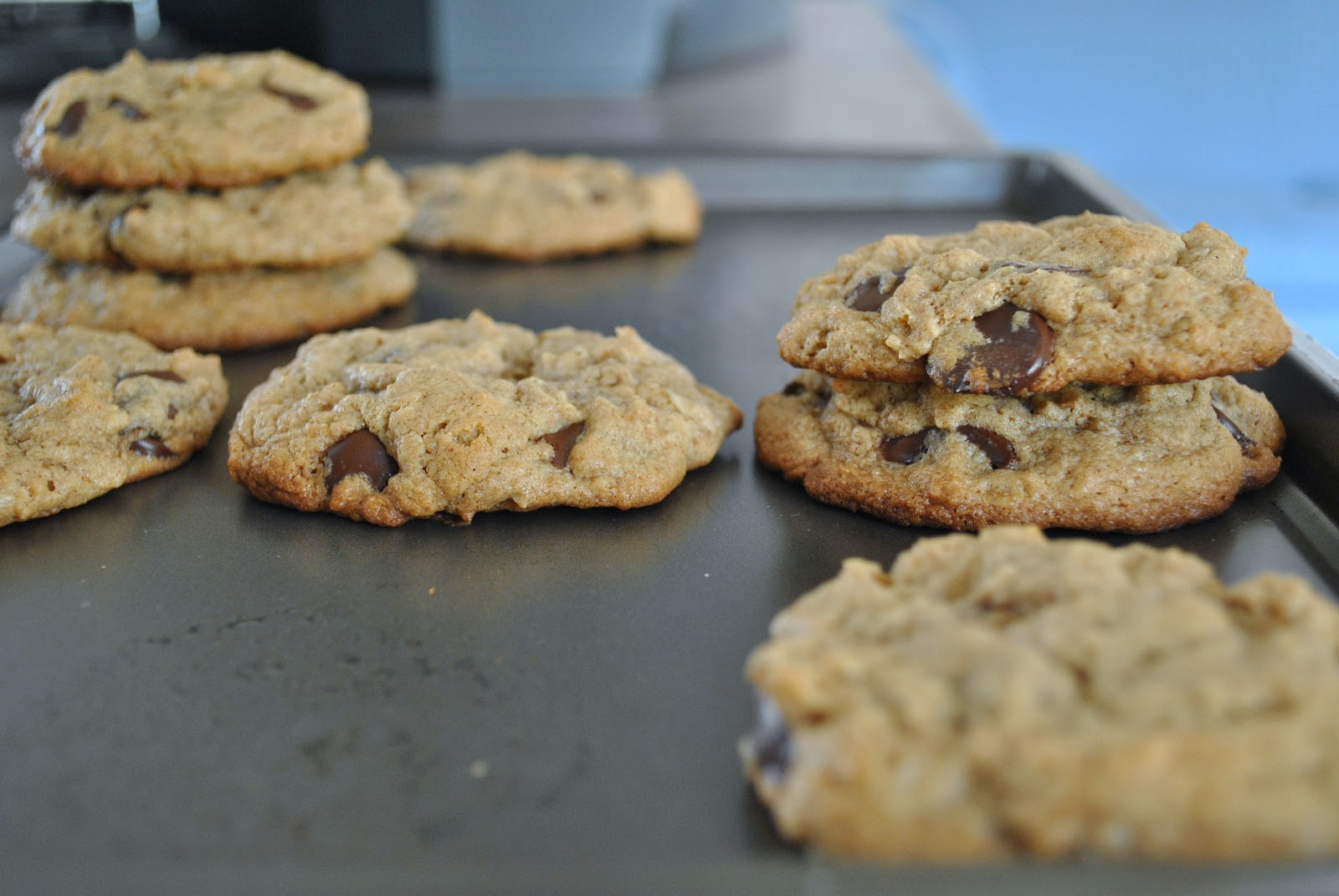 butter cookie recipe from allrecipes.com, substituted almond butter ...