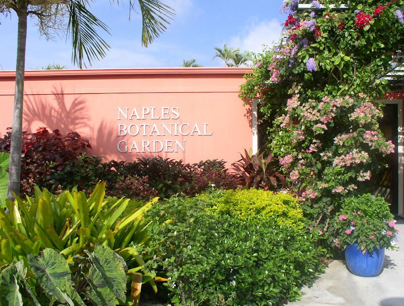 Florida Flowers And Gardens Zimsculpt Zimbabwean Sculpture At The Naples Botanical Garden