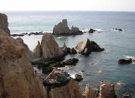 Arrecife de las Sirenas (Cabo de Gata-Almería)