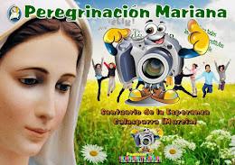 Peregrinación Mariana 2016,. Fotos