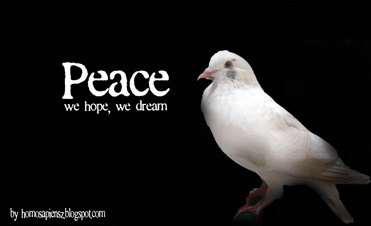 http://3.bp.blogspot.com/-tP8q4pbXzVU/Tpocv-KHXxI/AAAAAAAAAOo/G4PqNrG4J40/s1600/peace+pigeon+copy.jpg