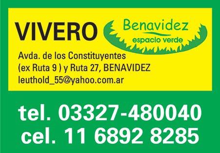 Vivero Benavidez