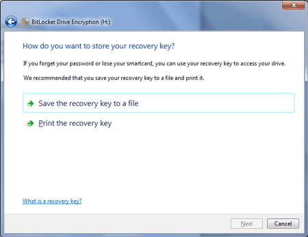 Save recovery key to a file