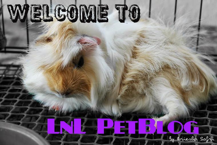 LnL PetBlog by Ariesha Safri